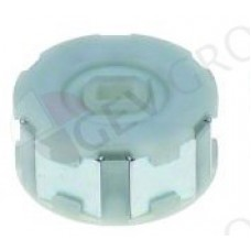 33800-09601 Magnetic coupling